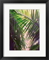 Framed Palm Trees 3