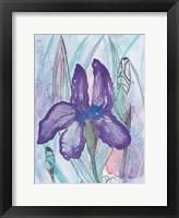 Framed Violet Iris