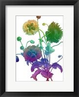 Framed Color Bloom