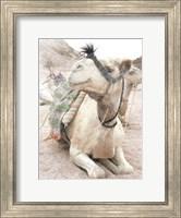 Framed Camel 2