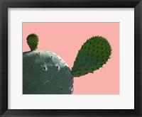 Framed Cactus Slice 1