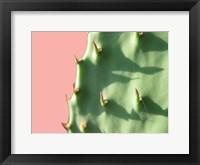 Framed Cactus Flat