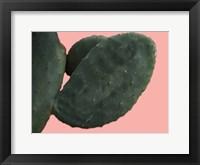 Framed Cactus Wall