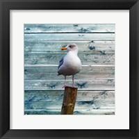 Framed Bay Bird