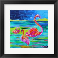 Framed Duo Flamingos