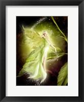 Framed Fairy 5