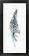 Framed Floating Feather