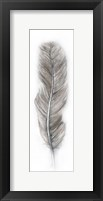 Framed Floating Feather 2