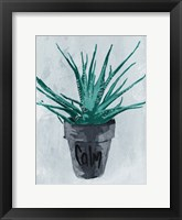 Framed Calm Plant