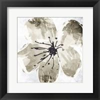 Framed Sketched Cream Flower Mate