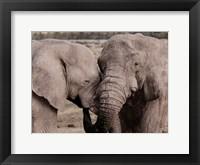 Framed African Embrace