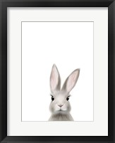 Framed Woodland Bunny
