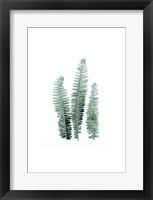 Framed Tender Leaves 1