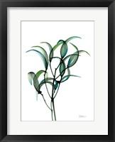 Framed Shimmering Botanical 1