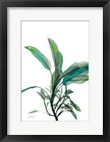 Framed Shimmering Botanical 2