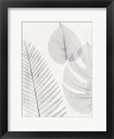 Framed Distilled Botanicals 1