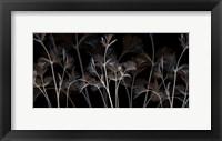 Framed Cocoa Amethyst 1