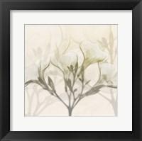 Framed Sunkissed Oleander