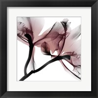 Framed Blushing Luster 1