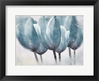 Framed Three Tulip Blue