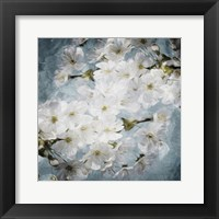 Framed White Flowers With Blue