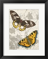 Framed Butterfly Travel 1
