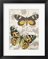 Framed Butterfly Travel 2