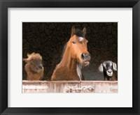 Framed Smiles from the Barn