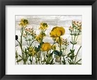 Framed Wildflower Jar 5