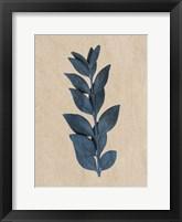 Framed Blue Leaf Print 1