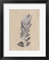 Framed Blue Leaf Print 2