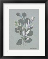 Framed Watercolor Greenery Series Medium Teal I