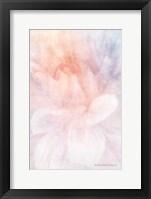 Framed Soft Dahlia Pastel Peach Lilac