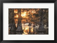 Framed Sunset in the Swamps