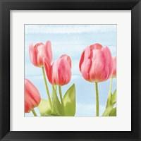 Framed Fresh Spring Tulips I