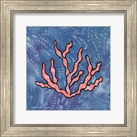 Framed Whimsy Coastal Conch Coral