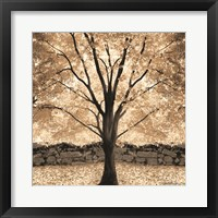 Framed Gold Canopy Tree