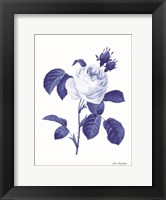 Framed Blue Botanical I