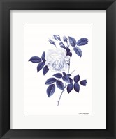Framed Blue Botanical II