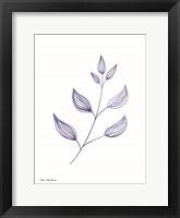 Framed Blue Plant II