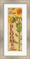 Framed Love Blooms Here