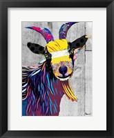 Framed Billygoat II