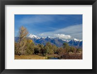 Framed Mission Mountains
