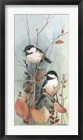 Framed New Chickadee II