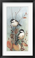 Framed New Chickadee II