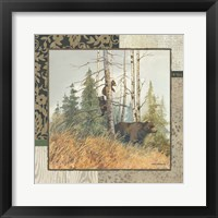 Framed Brown Bears with Border