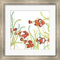 Framed Orange Fish