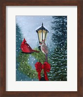 Framed Cardinals and Lamppost