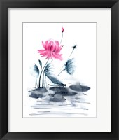 Framed Pink Flower and a Lily Pad