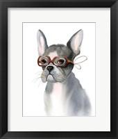 Framed Frenchie